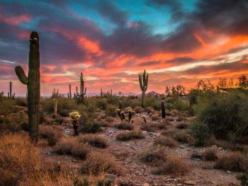How to Plan the Perfect Weekend Getaway in Phoenix, Arizona www.casualtravelist.com