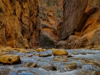 Add This to Your Adventure List- Hiking the Narrows in Zion National Park in the Winter www.casualtravelist.com