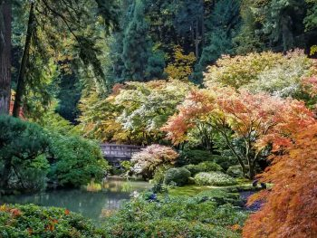Portland Japanese Garden - One Great Weekend - Your Guide for Two Perfect Days in Portland, Oregon www.casualtravelist.com