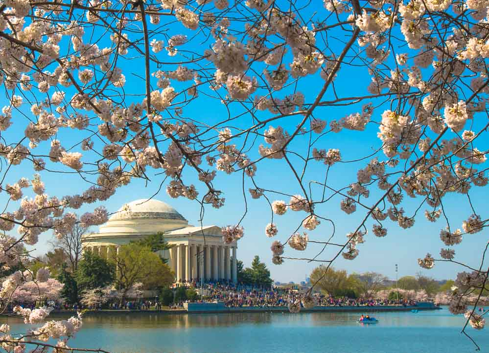 25 Tips for your First Trip to Washington DC. www.casualtravelist.com